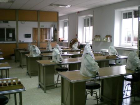 Escuela Técnica Superior de Ingeniería de Montes, Forestal y del ...